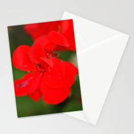 Pretty in Red Stationery Cards