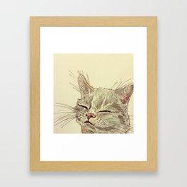 A cat named Mischa Framed Art Print
