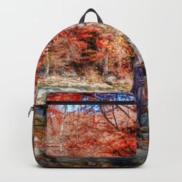 THE GUADALUPE RIVER Backpack