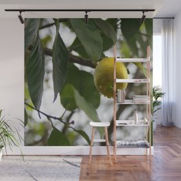 Spring time Wall Mural