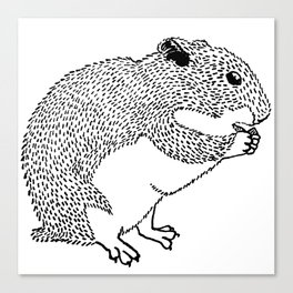 Hungry Hamster Eating A Seed Canvas Print