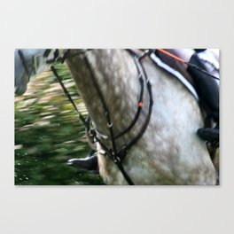 Guts and Speed Canvas Print