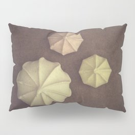 Meringues Pillow Sham