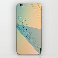 Cool World #2 iPhone & iPod Skin