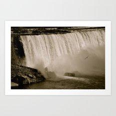 3 Gulls in the Deluge Art Print