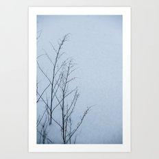 Winter II Art Print