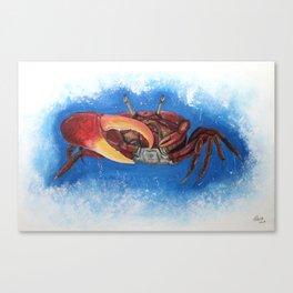 Sea crab Canvas Print