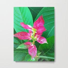 Flower #1 Color Metal Print