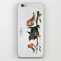 cock iPhone & iPod Skins featuring Cock Robin by rob art | illustration