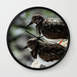 Two Sandpipers Wall Clock