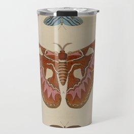 BUTTERFLIES ATLAS Moth LEPIDOPTERA - Pieter Cramer Hanging Wall Art Decor Natural History Print Travel Mug