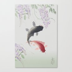 Two Koi and Wisteria Blossoms Canvas Print
