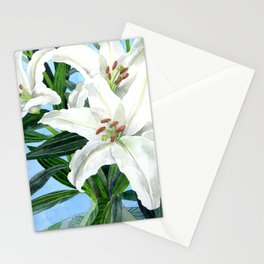 Lily White Stationery Cards