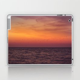 In Search Laptop & iPad Skin