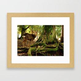 deer in nara koen Framed Art Print