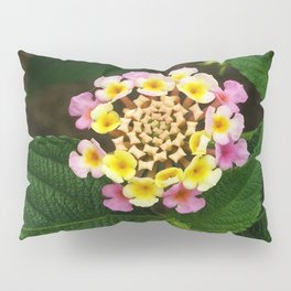 Fresh Lantana Flower Against Leaf Background Pillow Sham