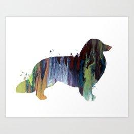 Longhaired dachshund Art Print