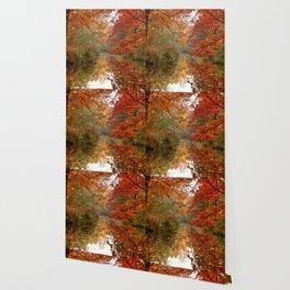 Autumn 17 Wallpaper