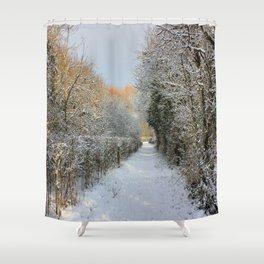Winter Walkway Shower Curtain
