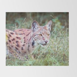 Lynx in the grass Throw Blanket