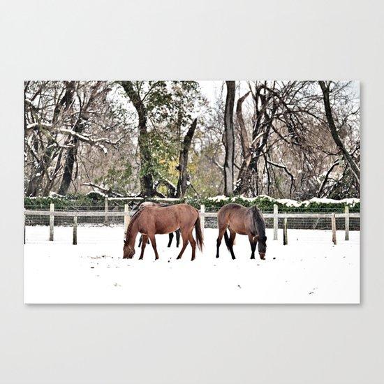 Colts Neck Snow Canvas Print