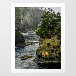 Cape Flattery, Olympic Peninsula, Washington Art Print