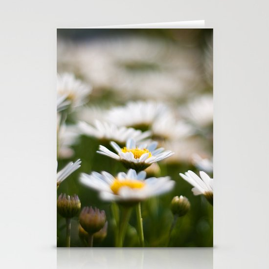 Daisy Field Stationery Cards