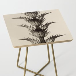 Acanthus Mollis Karl Blossfeldt Side Table