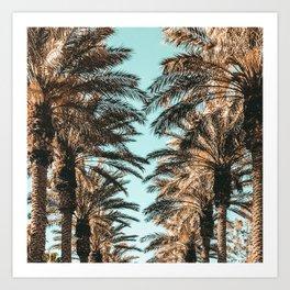 {1 of 2} Palm Tree Canopy // Tropical Summer Beach Teal Shaded Sky Art Print