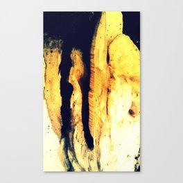 Nr. 277 Canvas Print