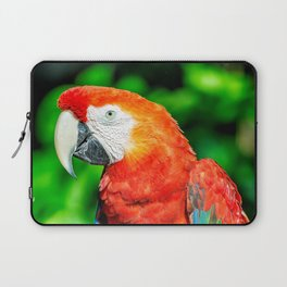Amazon Parrot Laptop Sleeve