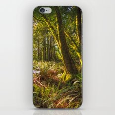 Redwood Regional iPhone & iPod Skin