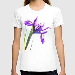 Iris Illustration T-shirt