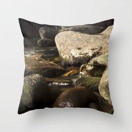 Morning Along Bear River Throw Pillow