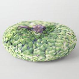 Feeling Froggy Floor Pillow