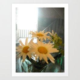 Chicago Daisies ~ flowers Art Print