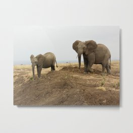 Elephant friends Metal Print
