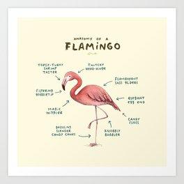 Anatomy of a Flamingo Art Print