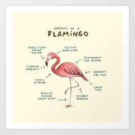 Anatomy of a Flamingo Art Print