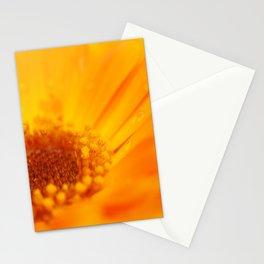 orange flower. macro Stationery Cards