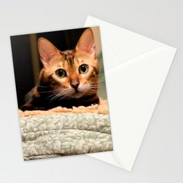 Did You Knock? Stationery Cards