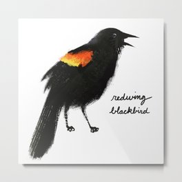 Redwing Blackbird Metal Print