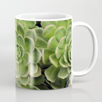 succulent Mugs featuring Succulent by Cynthia del Rio