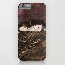 Snakestress At Large iPhone Case
