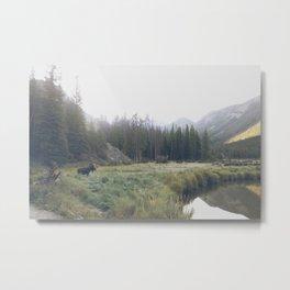 Morning Meadow Moose Metal Print