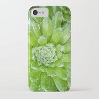 succulent iPhone & iPod Cases featuring Succulent by constarlation