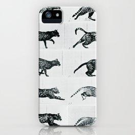 Time Lapse Motion Study Cat Monochrome Cat Mom Herding Cats iPhone Case
