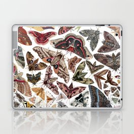 Moths of North America Laptop & iPad Skin