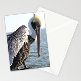 brown pelican, gulf pier, gulf shores, alabama Stationery Cards