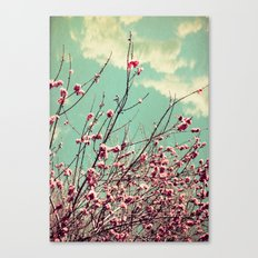 Pink Lapacho Tree Canvas Print
